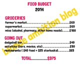 Healthy Grocery Shopping on a Budget: May Checkin!